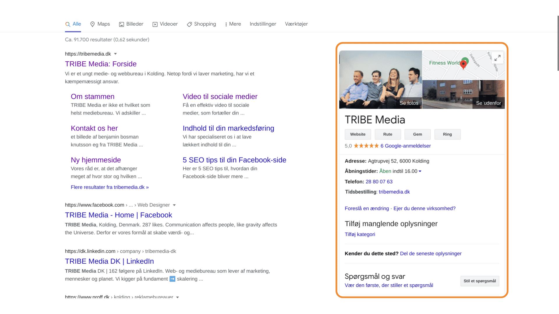 TribeMedia Google My Business